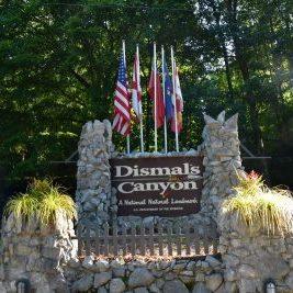 Dismals Canyon Phil Campbell Alabama 15