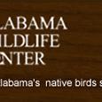 alabama-wildlife-center-Pelham-Alabama