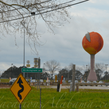 Worlds-largest-peach-clanton-alabama